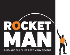 RocketMan - Bird and Wildlife Pest Management